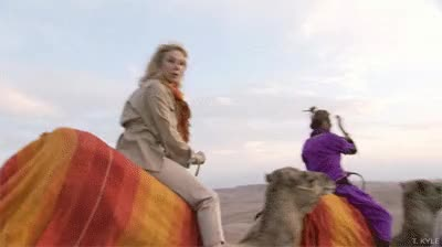 Watch and share Camel GIFs on Gfycat