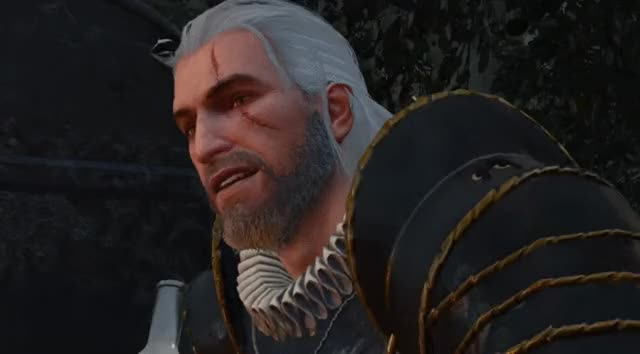 Watch and share Witcher 3 - Geralt Takes A Drink GIFs by Wes on Gfycat