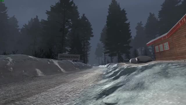 Watch Dirt Rally oops GIF on Gfycat. Discover more related GIFs on Gfycat