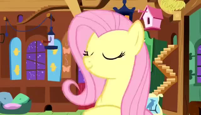 Watch squee GIF on Gfycat. Discover more fluttershy GIFs on Gfycat