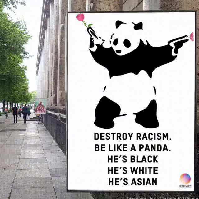 Watch and share Panda GIFs on Gfycat