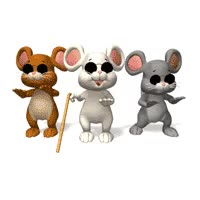 Watch blind mice GIF on Gfycat. Discover more related GIFs on Gfycat