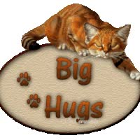 Watch and share Big Hugs ... animated stickers on Gfycat
