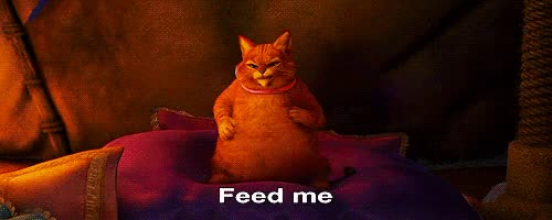 Watch and share Feed Me GIFs on Gfycat