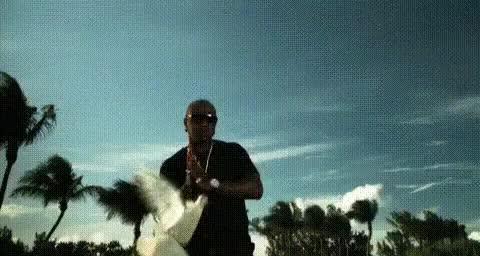 Watch and share Birdman GIFs on Gfycat