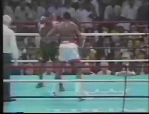 Watch Tyson Quickest Left Hook GIF on Gfycat. Discover more My favorite boxing KO of all time. GIFs on Gfycat