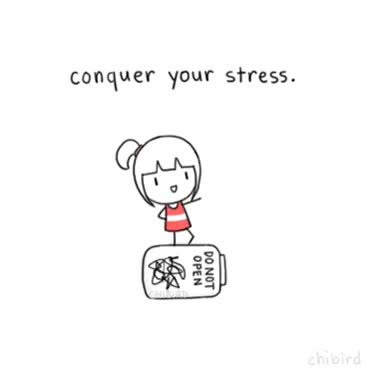 Watch motivational penguin GIF on Gfycat. Discover more related GIFs on Gfycat
