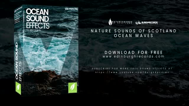 Ocean Sound Effects | Nature Sounds Of Scotland | Free Sound Effects
