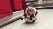 Watch Merry Christmas Marnie! GIF on Gfycat. Discover more related GIFs on Gfycat