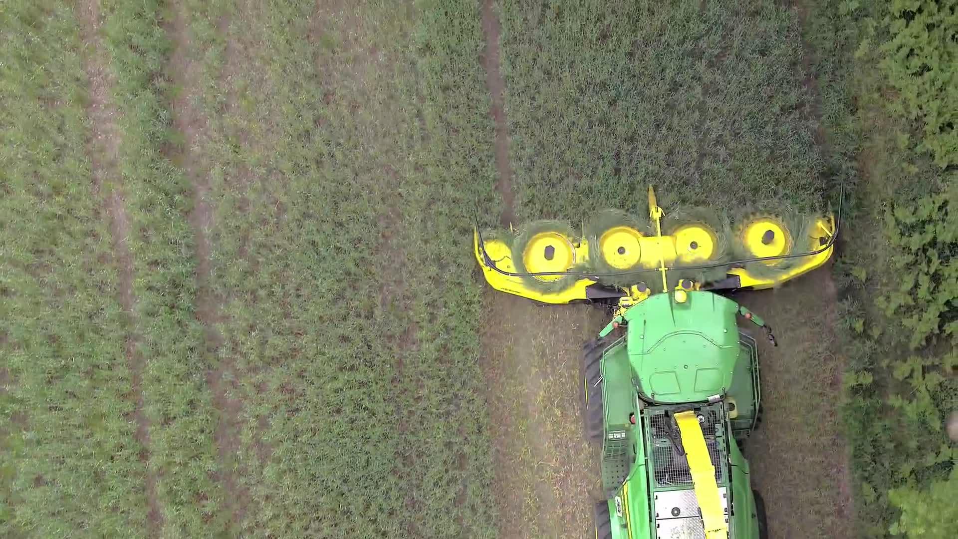 claas, céréales, de, ensilage, feldhäcksler, forage, harvester, head, immatures, maisernte, maissilage, maisvorsatz, maïs, mähvorsatz, rotary crop header, rotary header, self-propelled, silage, spfh, whole crop header, 475plus - Ganzpflanzen Silage (GPS) GIFs