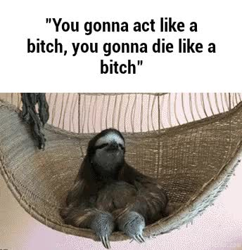 Watch and share Slothgifs GIFs and Thuglife GIFs on Gfycat