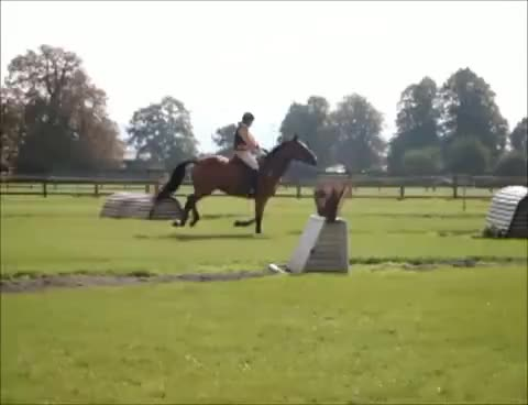 Watch and share Cross Country GIFs and Horse Riding GIFs on Gfycat