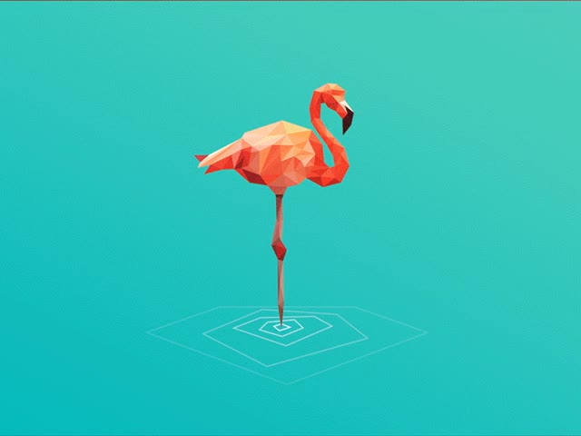 Watch flamingo GIF on Gfycat. Discover more related GIFs on Gfycat