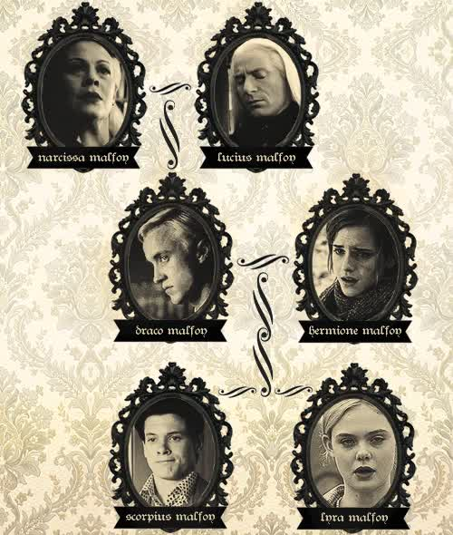 Watch and share The Malfoy Children GIFs and Malfoy Family Tree GIFs on Gfycat