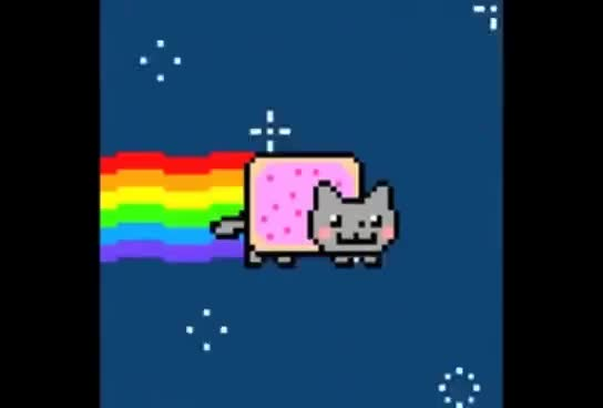 Watch Nyan GIF on Gfycat. Discover more cat, nyan GIFs on Gfycat