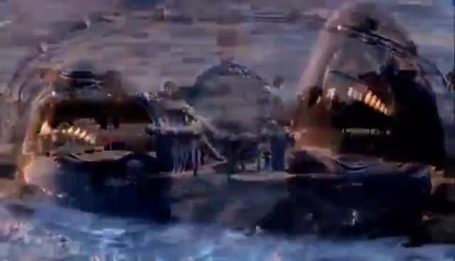 whale, whales GIFs