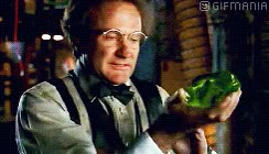 Watch and share Robin Williams On Flubber GIFs on Gfycat