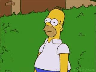 Watch and share Homer-simpson-bush-gif GIFs on Gfycat