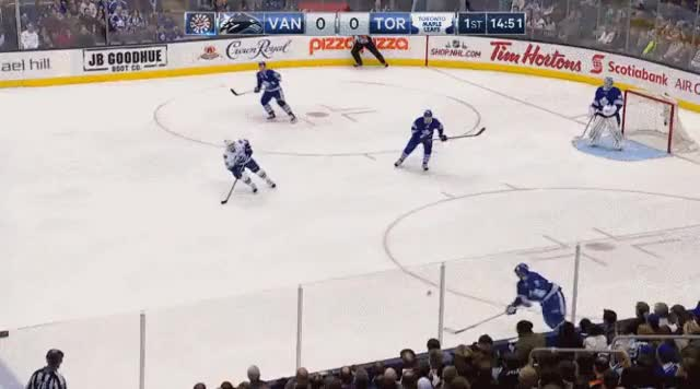 Watch and share Leafs GIFs on Gfycat