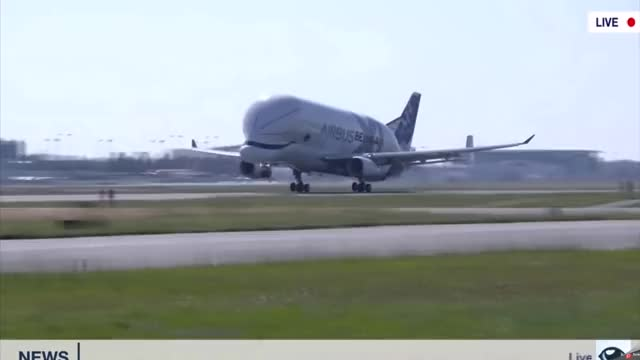 Watch and share Beluga First Flight GIFs and Airbus Beluga A330 GIFs by GIFs For Everything on Gfycat