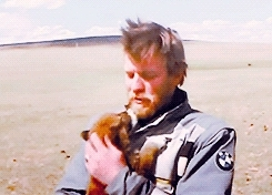 ewan mcgregor, i can't, mine2, puppy, this is too perfect, Ewan McGregor and his puppy (x) GIFs