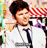 Watch DAMMIT JIM GIF on Gfycat. Discover more ben wyatt, dailyparksnrec, dailypawnee, gif*, idk whats the purpose of this gifset lmao, mine, parks and rec, parksedit GIFs on Gfycat