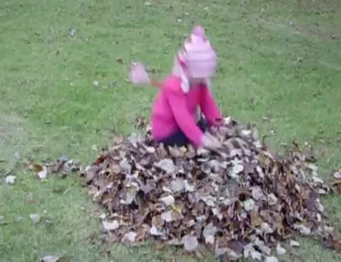 Watch Baby face plant GIF on Gfycat. Discover more Fall Leaves Fail GIFs on Gfycat