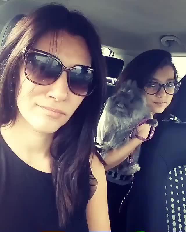 Watch and share Zorana Tadic GIFs by Milovanchebatica on Gfycat