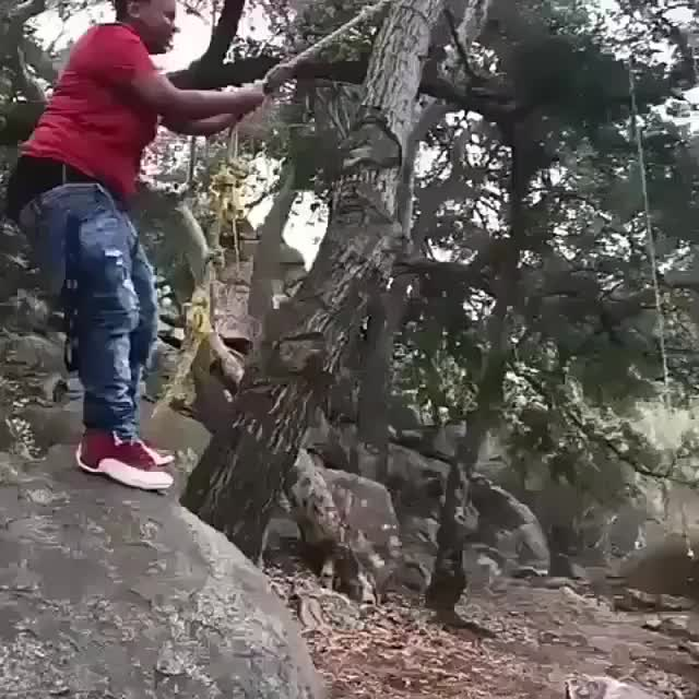 Watch and share Rope In The Woods GIFs by O-shi on Gfycat