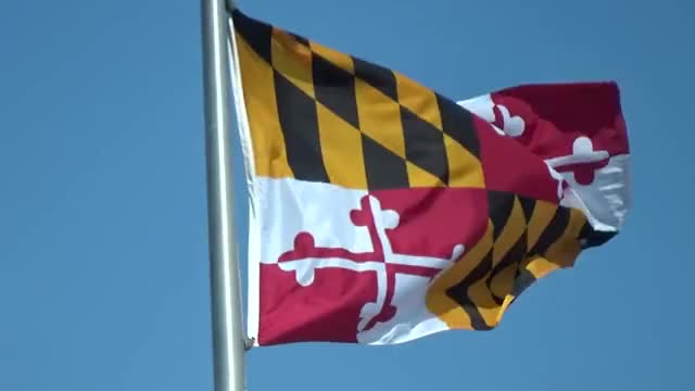 Watch this flag day GIF by leahstark on Gfycat. Discover more Flag Day, Maryland, flag, flags GIFs on Gfycat