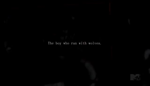 Watch Stiles GIF on Gfycat. Discover more the boy who ran with wolves GIFs on Gfycat