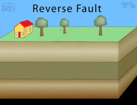 Watch and share Reverse Fault GIFs on Gfycat