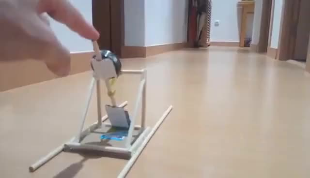 Watch and share Mini DIY Kids Catapult GIFs on Gfycat