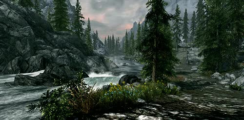 Watch Skyrim GIF on Gfycat. Discover more related GIFs on Gfycat
