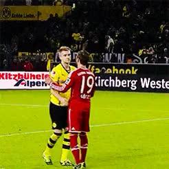 Watch and share Borussia Dortmund GIFs and Bayer Munich GIFs on Gfycat
