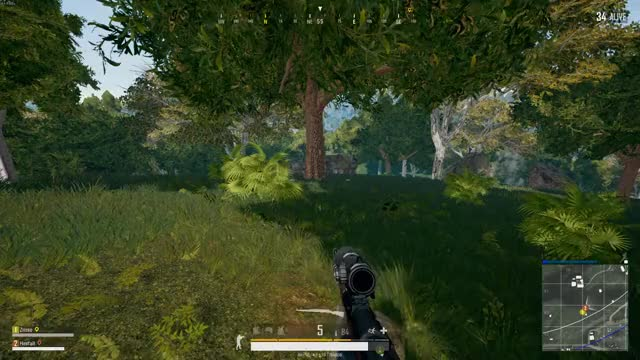 Watch and share Vlc-record-2018-05-14-01h42m56s-PLAYERUNKNOWN GIFs by hexfall on Gfycat