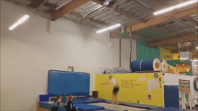 Watch Quinn Ross Trampoline GIF on Gfycat. Discover more askreddit GIFs on Gfycat