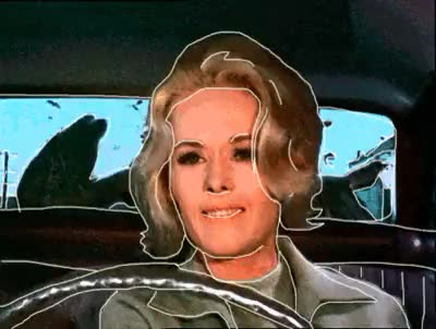 Watch Horn GIF on Gfycat. Discover more 1963, animation, birds, car, drive, driving, hitchcock, homenaje, hommage, horn, i hope Hitchcock won't kill me for this..., panic, pájaros, rotoscope, rotoscoping, sixties, steering wheel, tippi hedren, vintage, volante GIFs on Gfycat