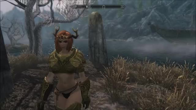 Watch and share Skyrim GIFs and Mod GIFs by Banjo on Gfycat