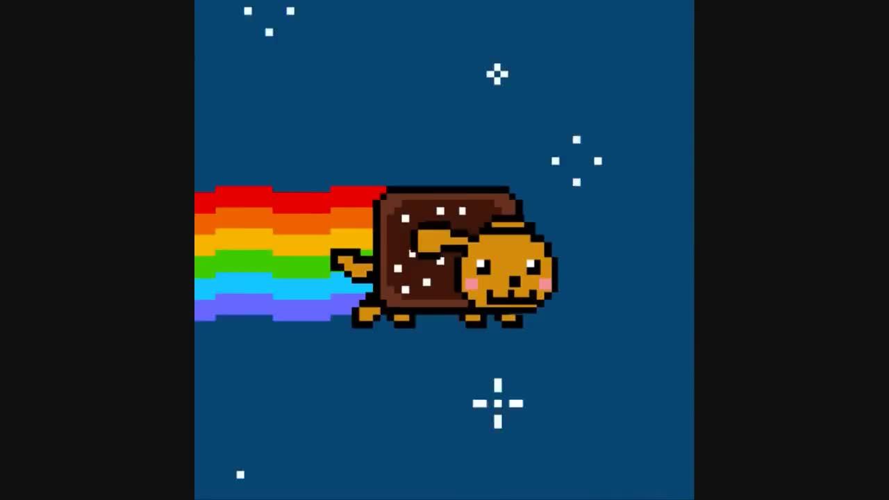 Nyan Dog GIFs