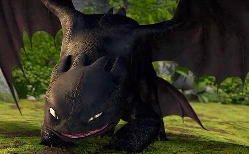 Watch and share 10000 Notes GIFs and Httyd Gifs GIFs on Gfycat