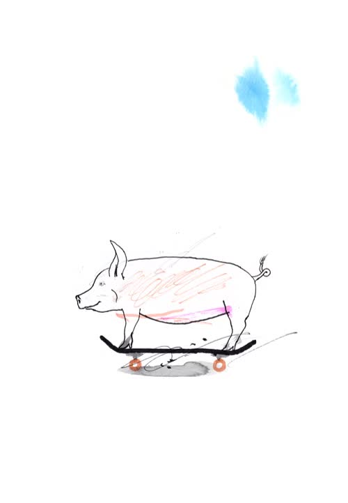 Watch and share Swine GIFs on Gfycat