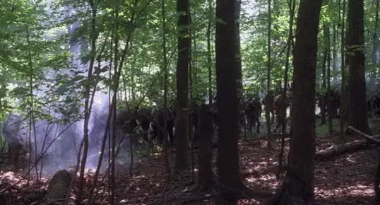 Watch Confederate Soldiers In The Woods GIF by @nurdbot on Gfycat. Discover more related GIFs on Gfycat