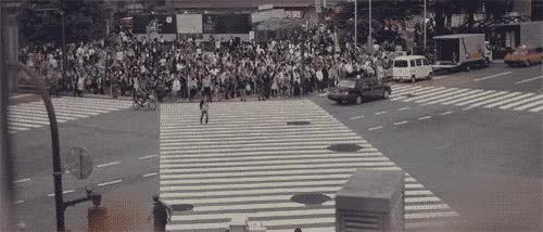 Watch crossing GIF on Gfycat. Discover more related GIFs on Gfycat