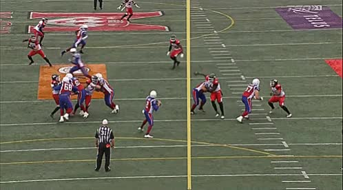 Watch and share Ernest Jackson GIFs and Stampeders GIFs by Archley on Gfycat
