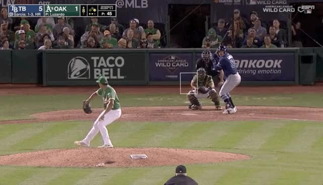 Watch and share Tampa Bay Rays GIFs and Baseball GIFs by devanfink on Gfycat