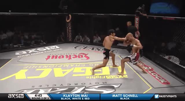 Watch Scnell - Rocked by left hook GIF by @gunnarn on Gfycat. Discover more related GIFs on Gfycat