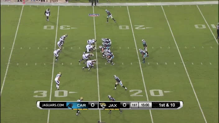 49ers Panthers, Panthers Drive GIFs
