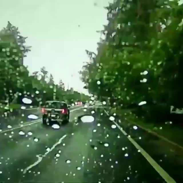 A lightning strike impacts a tree beside a road and sends the shattered trunk hurtling in front of a car GIFs