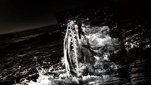 Watch and share Ai Shinozaki GIFs on Gfycat